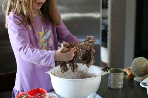 No-Bake-Chocolate-Cookies-Dough