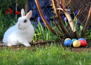 Easter traditions in the UK